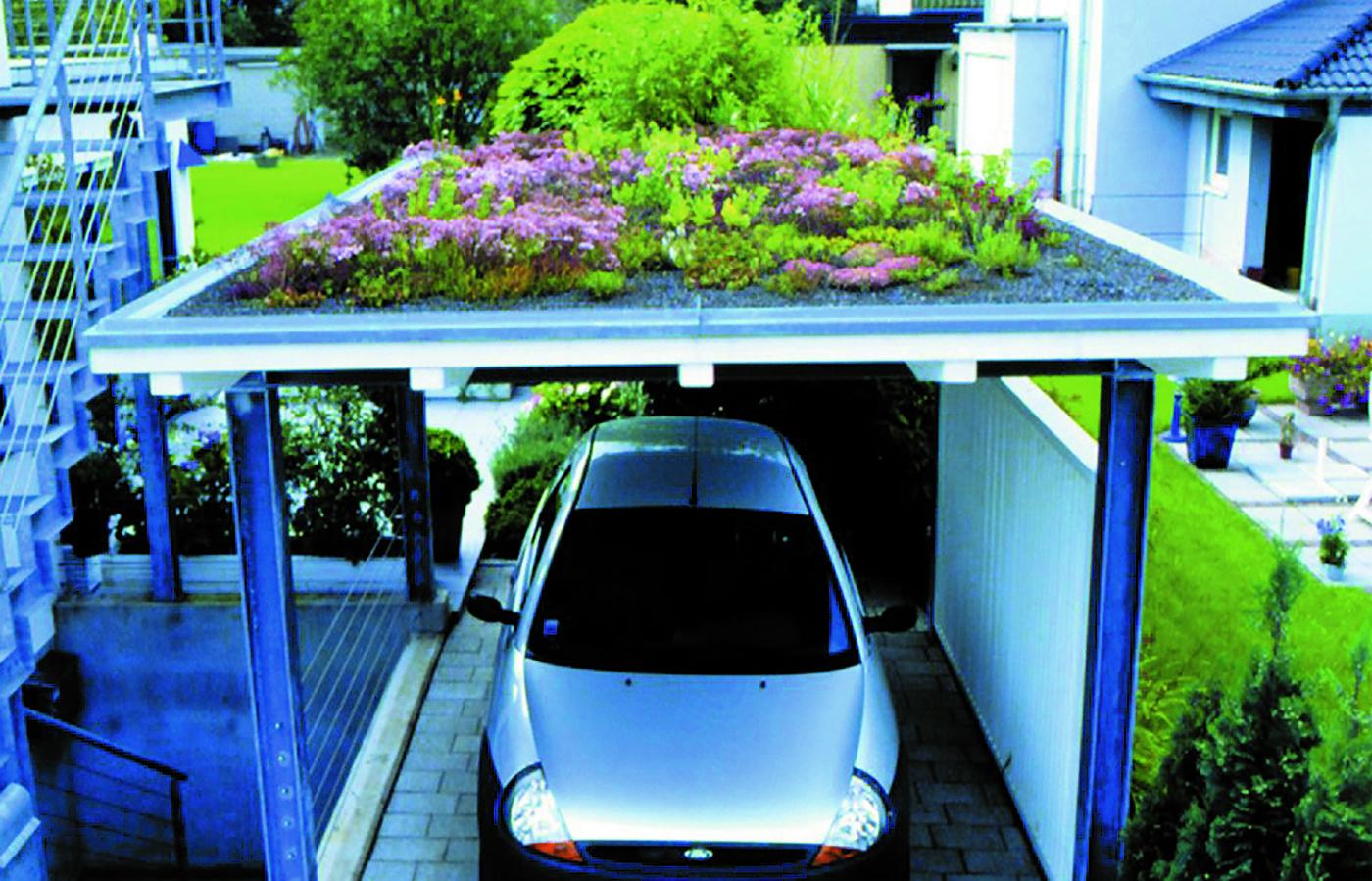 Bild 3 - Dachbegrünung