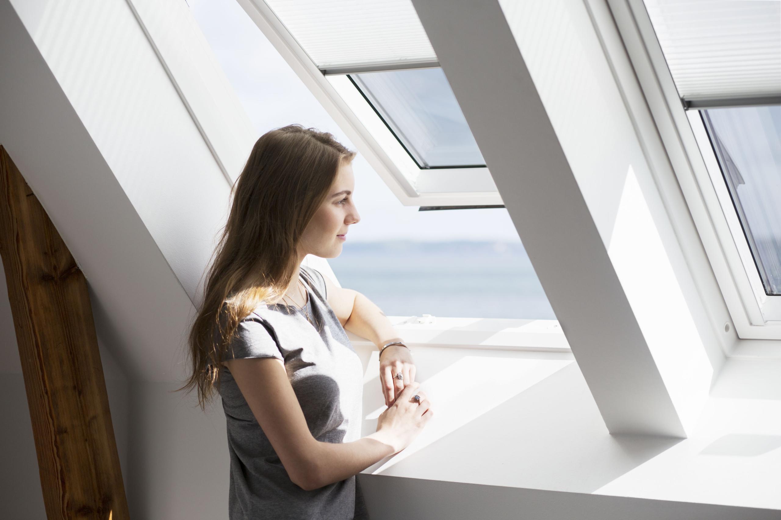 Bild 2 - Schwingfenster